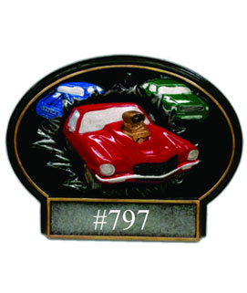 Bust Thru Oval Resin Car Show Award #2